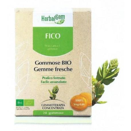 GOMMOSE AL FICO BIO - HERBALGEM -